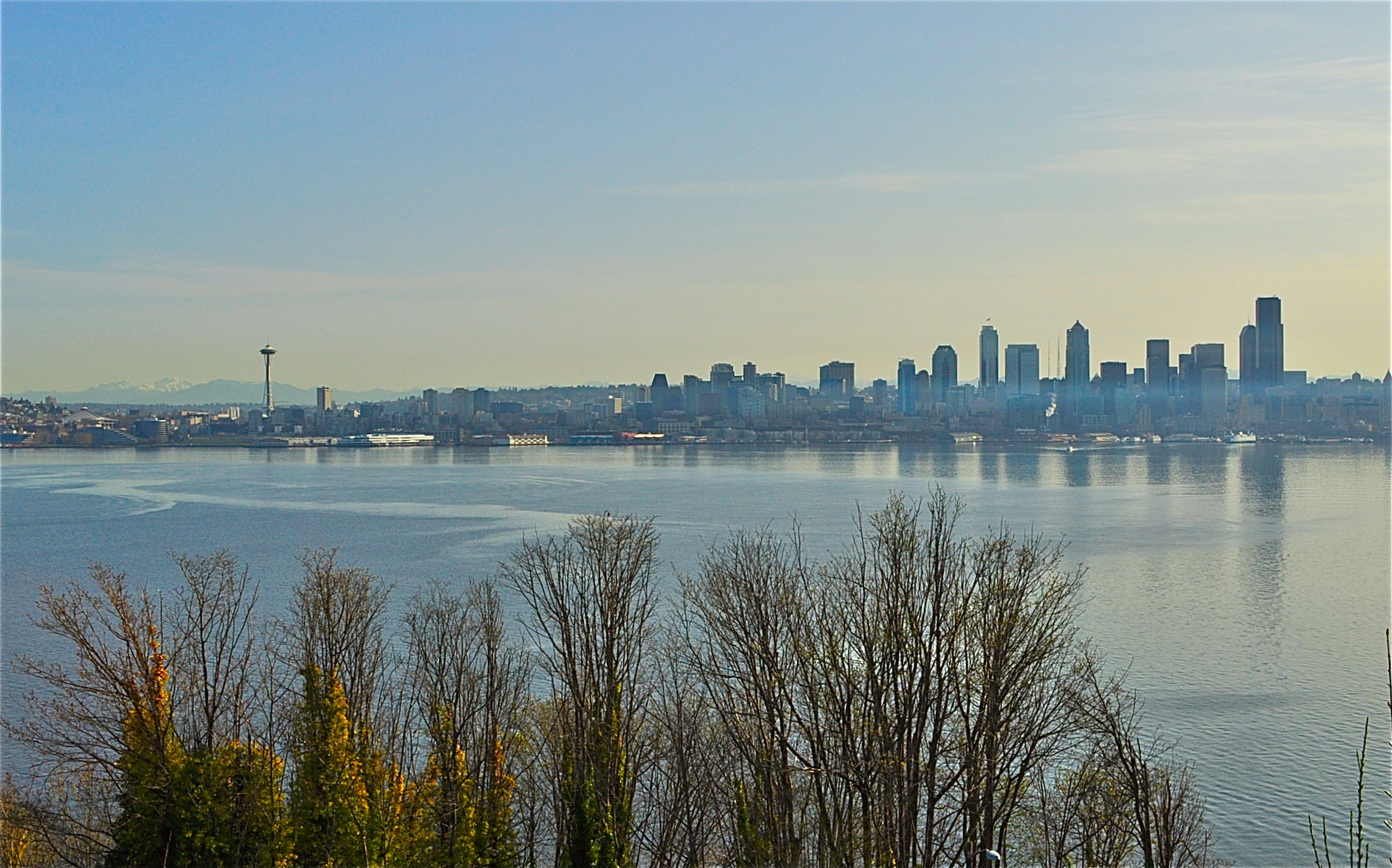 Seattle Skyline From