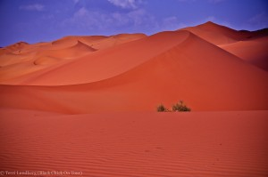 Shaybah Red Sand Dunes
