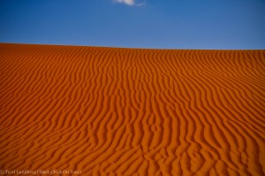 Shaybah Wavy Sand Dunes