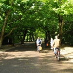 Riding Through Vondelpark