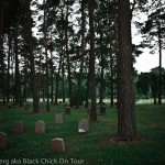 Low Lying Tombstones Amongst Trees