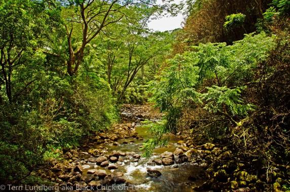 Kolekole Stream