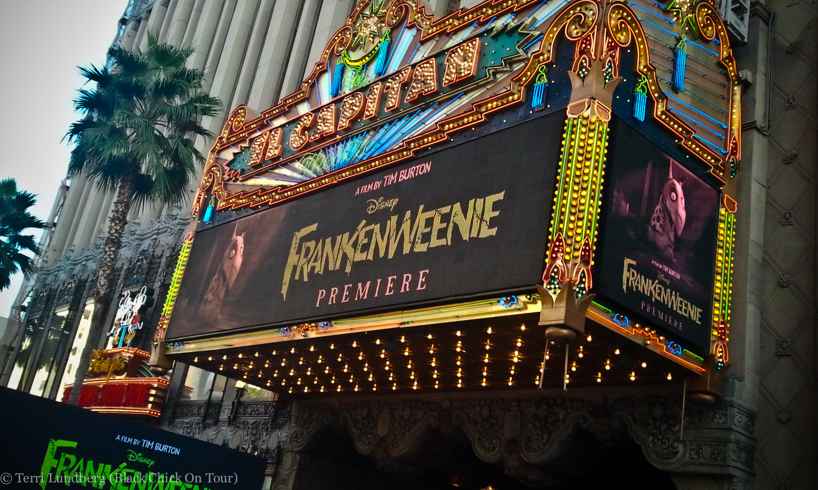 Video Frankenweenie Hollywood Movie Premiere Celebrity Interviews