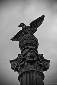 Bald Eagle on Pillar