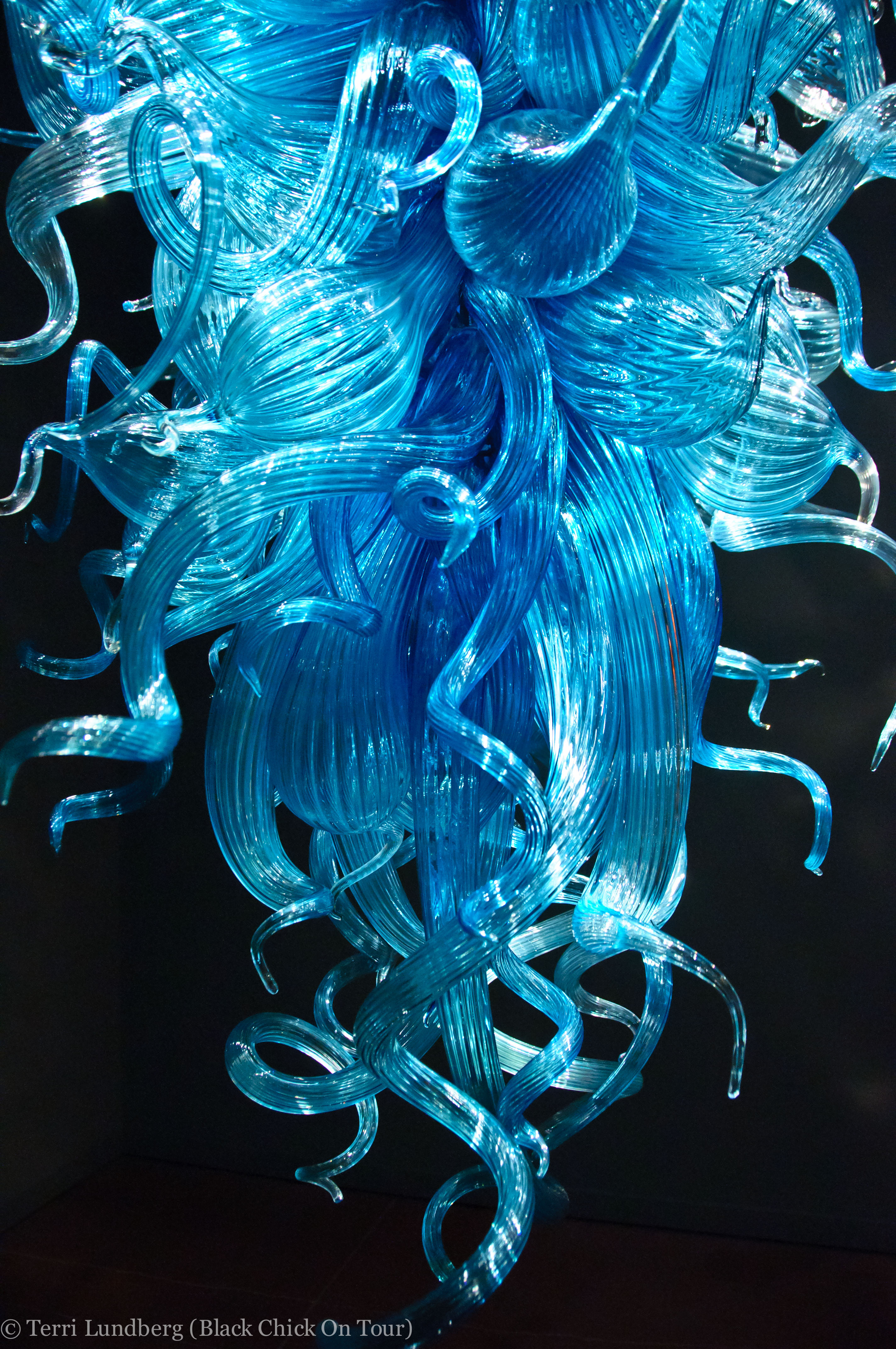 Photo tour chihuly garden and glass chihuly blue chandelier arubaitofo Image collections