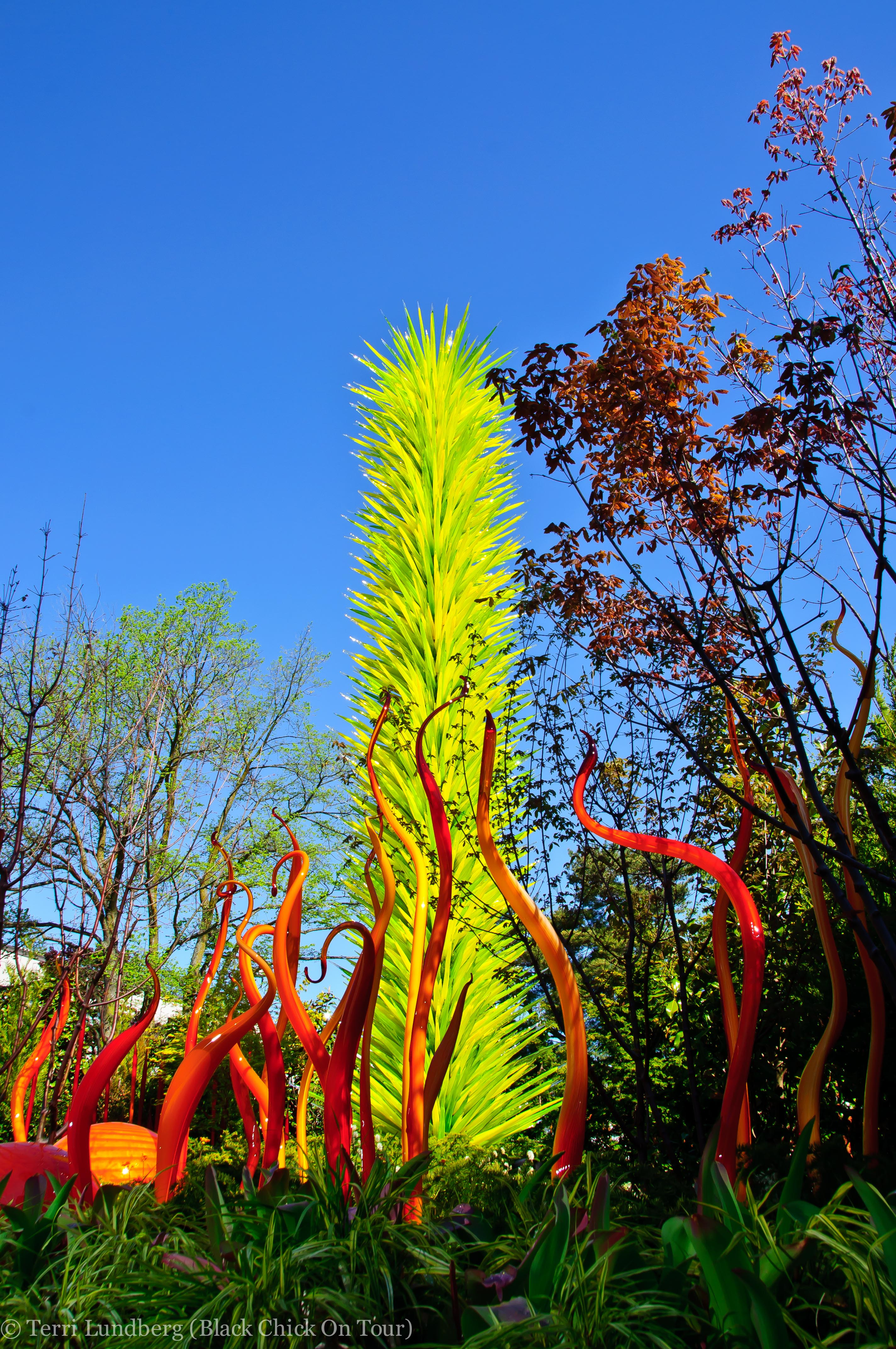 PHOTO TOUR Chihuly Garden and Glass