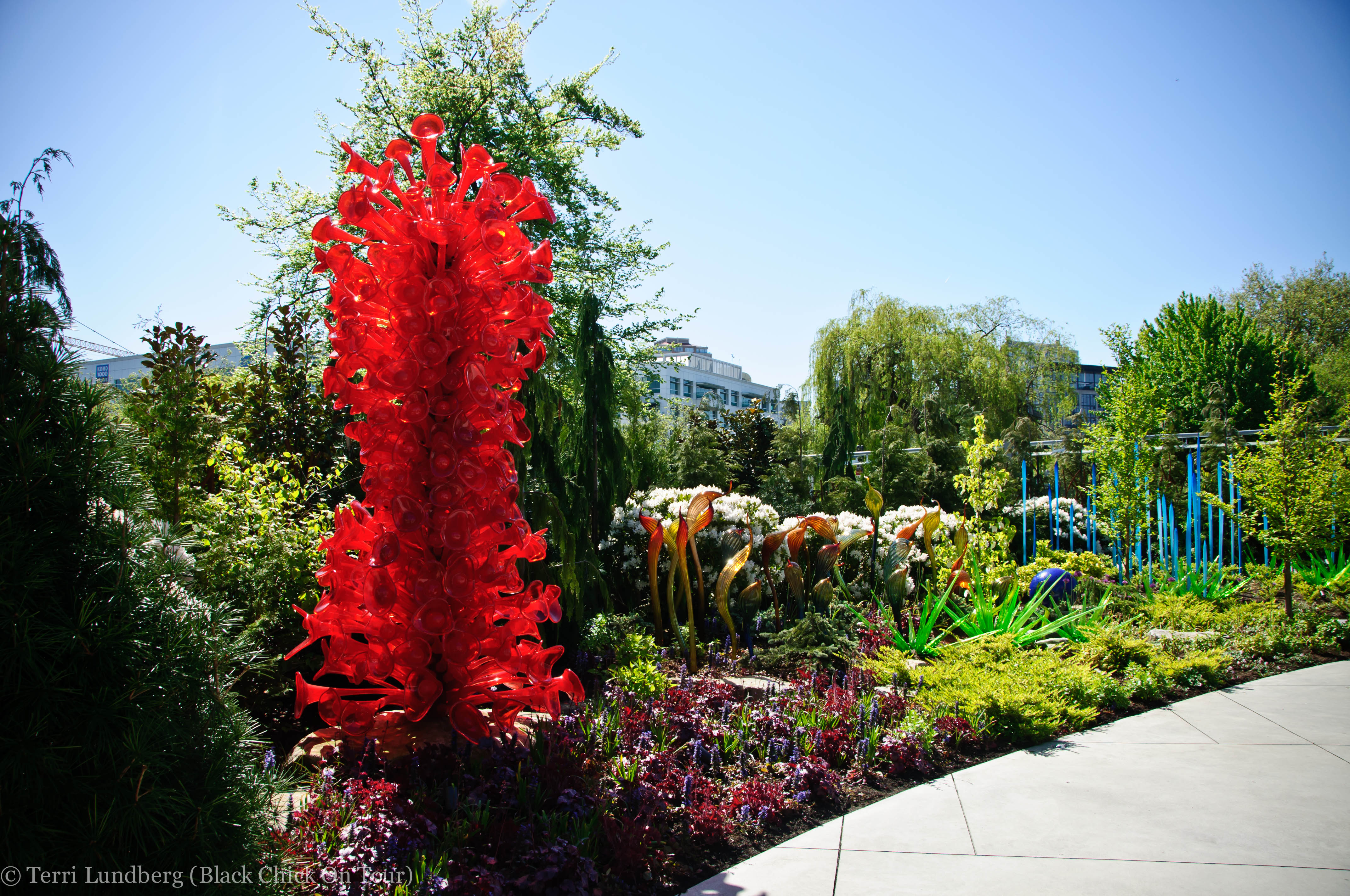 chihuly garden and glass - photo #34