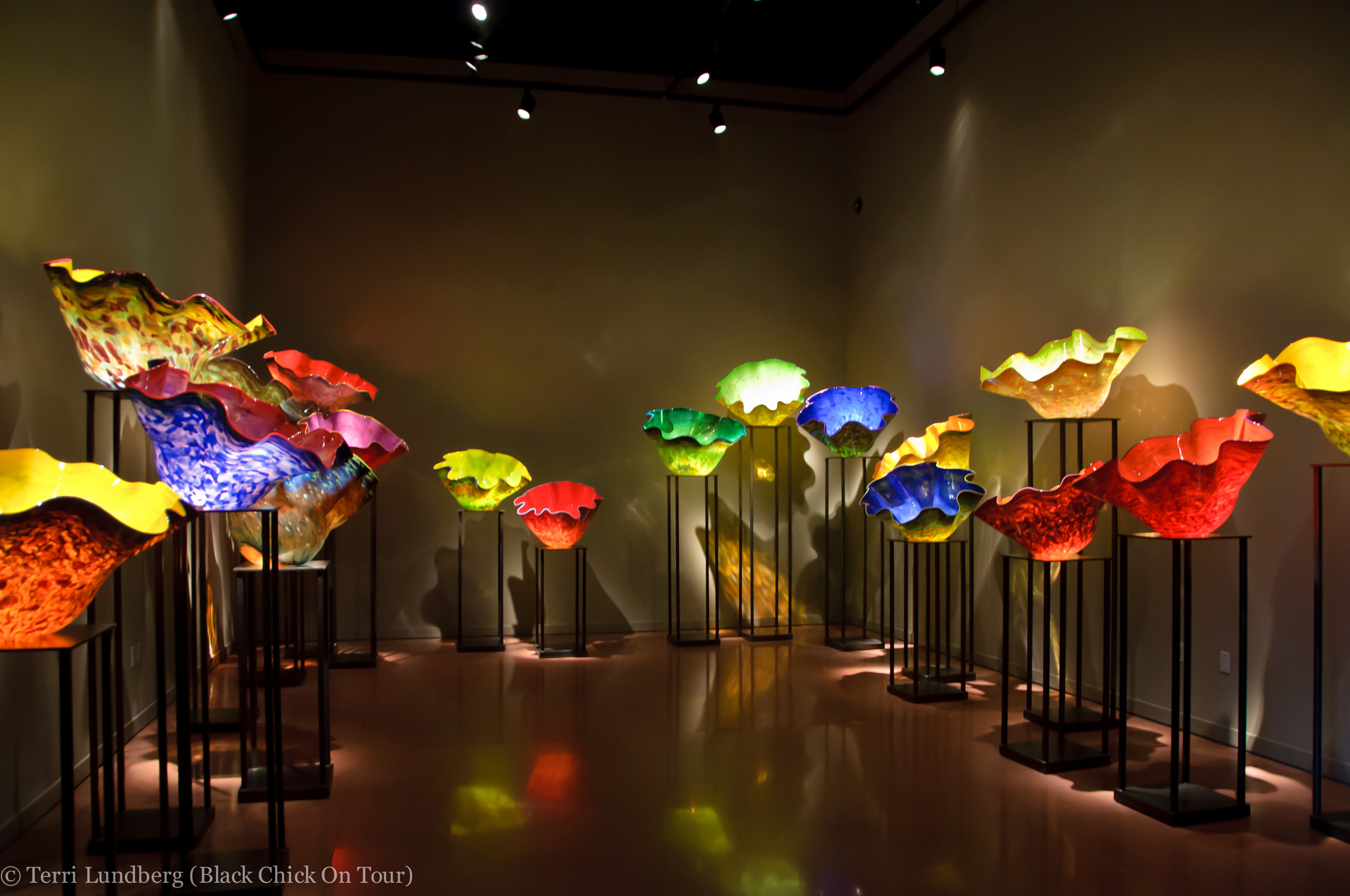 PHOTO TOUR: Chihuly Garden and Glass