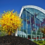 PHOTO TOUR: Chihuly Garden and Glass – Seattle