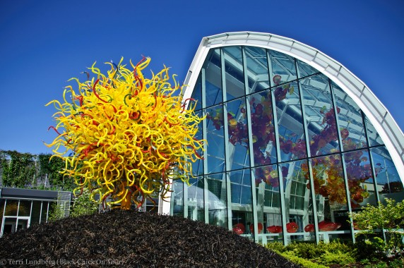 Chihuly Sun with Glasshouse