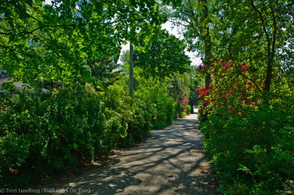 Algonquin Island Residential Walkway