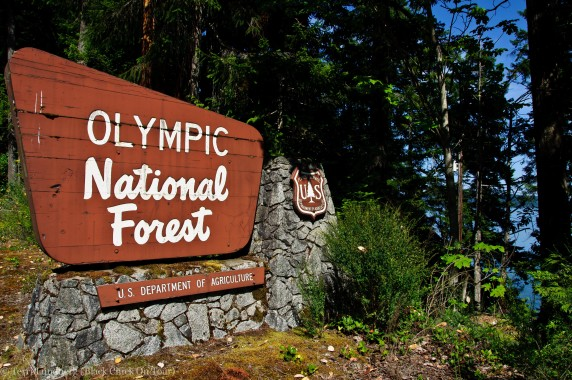 Olympic National Forest Sign