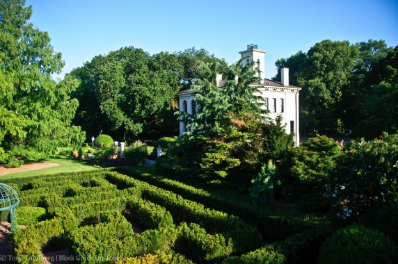 The Maze from the Observatory
