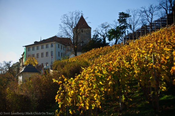 St. Wenceslas Vineyard at Prague Castle