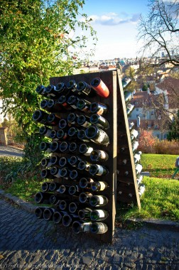 Wine Bottles at St. Wenceslas Vineyard at Prague Castle
