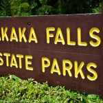 Photo Tour:  Akaka Falls, Hawaii